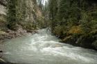 Jonston Falls - Banff N.P.