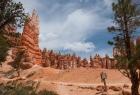 Bryce Canyon N.P.  - Auf dem Weg zum Queens Garden