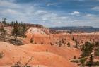 Bryce Canyon N.P.  - Aufstieg zum Rim