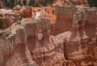 Bryce Canyon N.P.  - Blick in den Canyon