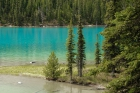 Maligne Lake - Spirit Island - Jasper N.P. - Alberta