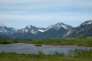 Waterton Lakes N.P. - Alberta - Bergpanorama