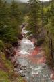 Waterton Lakes N.P. - Alberta - Red Rock Canyon