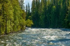 Wells Gray P.P. - Clearwater River