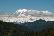 Mount Rainer N.P.